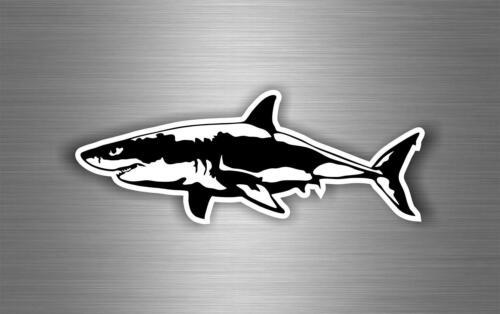 Sticker car moto biker bomb jdm decal bumper tuning shark  r2