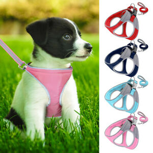 Reflective-Dog-Harness-with-Leash-Padded-Step-in-Puppy-Comfortable-Walking-Vest