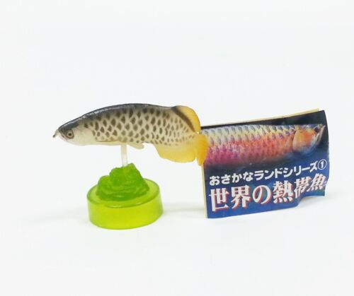 Marmit Miniature Tropical Fish Collectible Secret Figure Golden Arowana #12