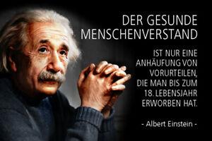 Albert Einstein Saying 40 Tin Sign Shield Arched Metal 20 X 30 CM