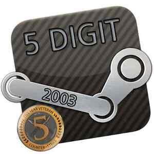 Steam-Account-5-Digit-5-stellig-14-Jahre-Years-2003-Original-E-Mail