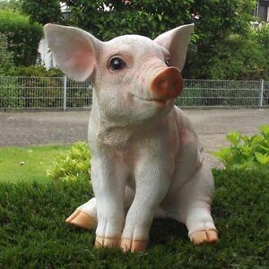 Gartenfigur-Schwein-Ferkel-38-003-sitzend-Haus-Garten-Deko-lebensecht-Figur
