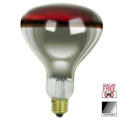 E26 Pack of 6 Ge Heat Lamp 250 W R40 Medium Base