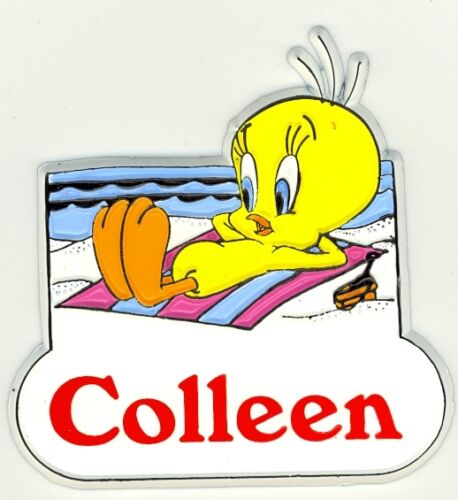 Tweety Bird Name Magnet ~ Colleen ~ Looney Tunes Collectible~ Stocking Stuffer