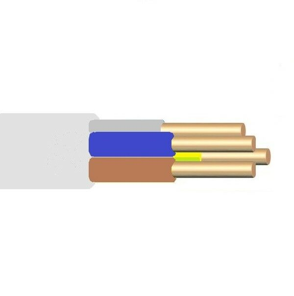 NYM-J 4x6mm²   m Feuchtraumkabel InsGrößetionskabel Kabel Profikabel grau | Erste Kunden Eine Vollständige Palette Von Spezifikationen
