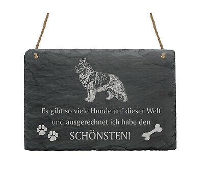 Gewissenhaft Schiefertafel « Shiloh Shepherd - SchÖnster Hund » Spruch Hunde Dekoration Deko