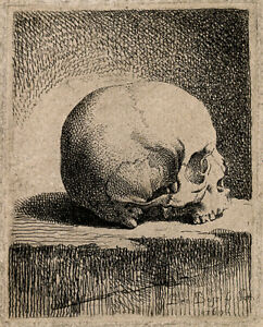 Skull; lateral view. Etching by B. Bossi, 1760 - Archival Quality Art Print