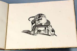 1827-Gottfied-MIND-Katzengruppen-cats-AUTISTIC-savant-10-rare-lithos