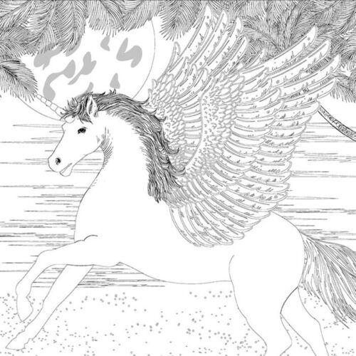 Pegasus NEU Motivkeilrahmen 30x30cm