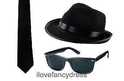 BLACK BLUES HAT SUN SHADES AND BLACK TIE AMERICAN BAND STAG NIGHT FANCY DRESS