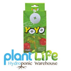 Plante il yoyo Plant Support, Boîte de 8  </span>
