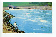 Grenada Lake MS Mississippi people fishing in outlet channel