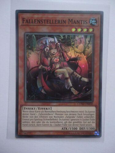 3X FALLENSTELLERIN MANTIS COTD-DE030 SUPER RARE