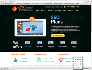 Outstanding-SEO-Website-Free-Installation-Hosting