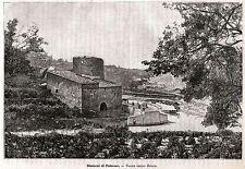 Lo Zucco, fra i comuni di Montelepre,Terrasini e Partinico. Palermo.Sicilia.1892