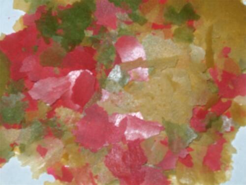 Bulk TROPICAL FLAKES Aquarium Fish Food 10 Lb BREEDER BOX FRESH!