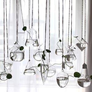 Beauty-Hanging-Glass-Flower-Planter-Vase-Terrarium-Container-Home-Garden-Decor
