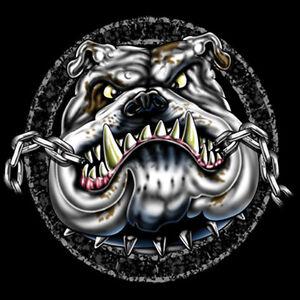 Black Dog Tee Shirts