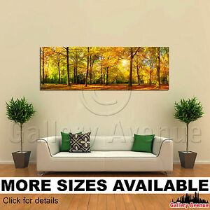 Autumn Orange Trees Sunny Forest 3.1 A Wall Art Canvas Picture Print