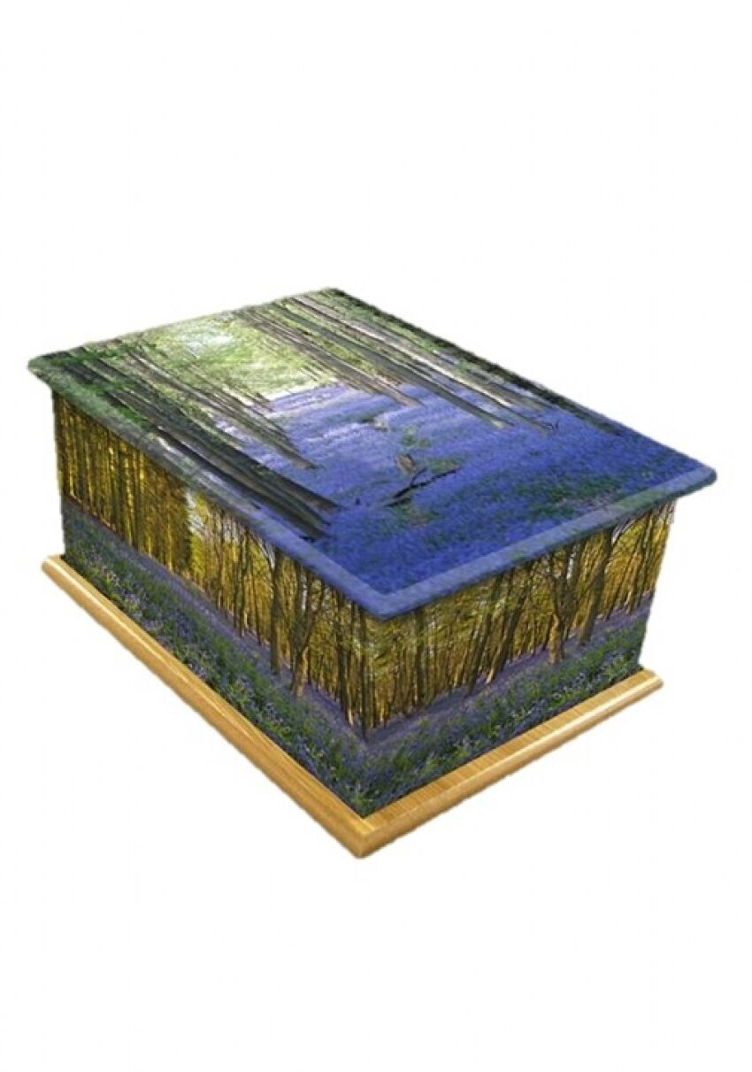 BLUEBELL BLUEBELL BLUEBELL en bois Crémation Cendres Urne Taille Adulte-UU900102A 5fb63d