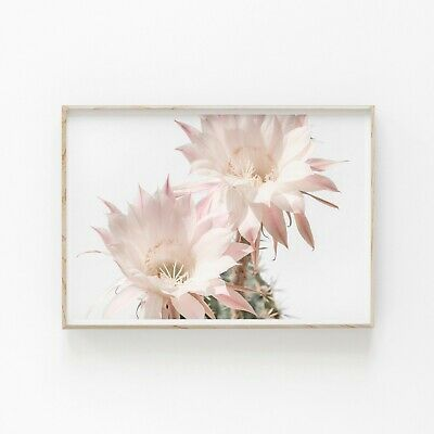 Cactus Flowers Blossom Wall Art Print Perfect Home Decor A3 A2 A1 Size