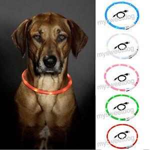 Leuchthalsband-LED-Halsband-Hundehalsband-Visio-Light-Karlie-USB