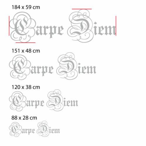 W133 Wandtattoo Wandaufkleber Schriftzug Carpe Diem Nütze den Tag