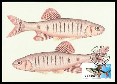 GüNstiger Verkauf Venda Mk 1987 Fische Fisch Fish Poisson Maximumkarte Maximum Card Mc Cm Cr55 Schrecklicher Wert Fische & Meeresleben