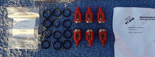Arandela de presión Válvula de chorro de alimentación Kranzle jetwash Kit De Reparación Reemplazo de 41648