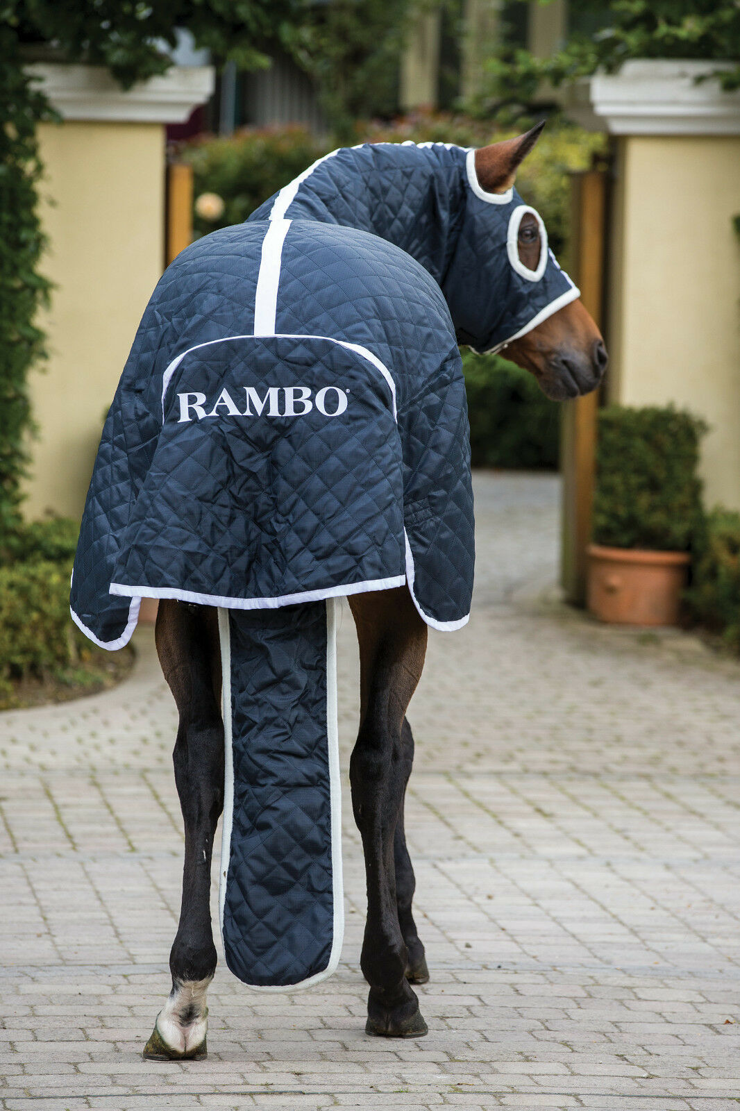 Horseware Rambo SHOW Combo SET RUG 100g Competition Ready Cooler/Stable/Travel Combo SHOW 464810