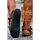 a Pebble in His Shoe by Dr Francine Barbetta 9781436346955 (paperback 2008)