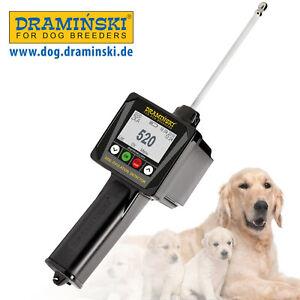 Original DRAMINSKI Ovulationsdetektor für Hündinnen. Direkt vom Hersteller!