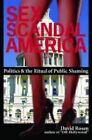 Sex Scandal America: Politics and the Ritual of Public Shaming by David Rosen (Hardback, 2009)