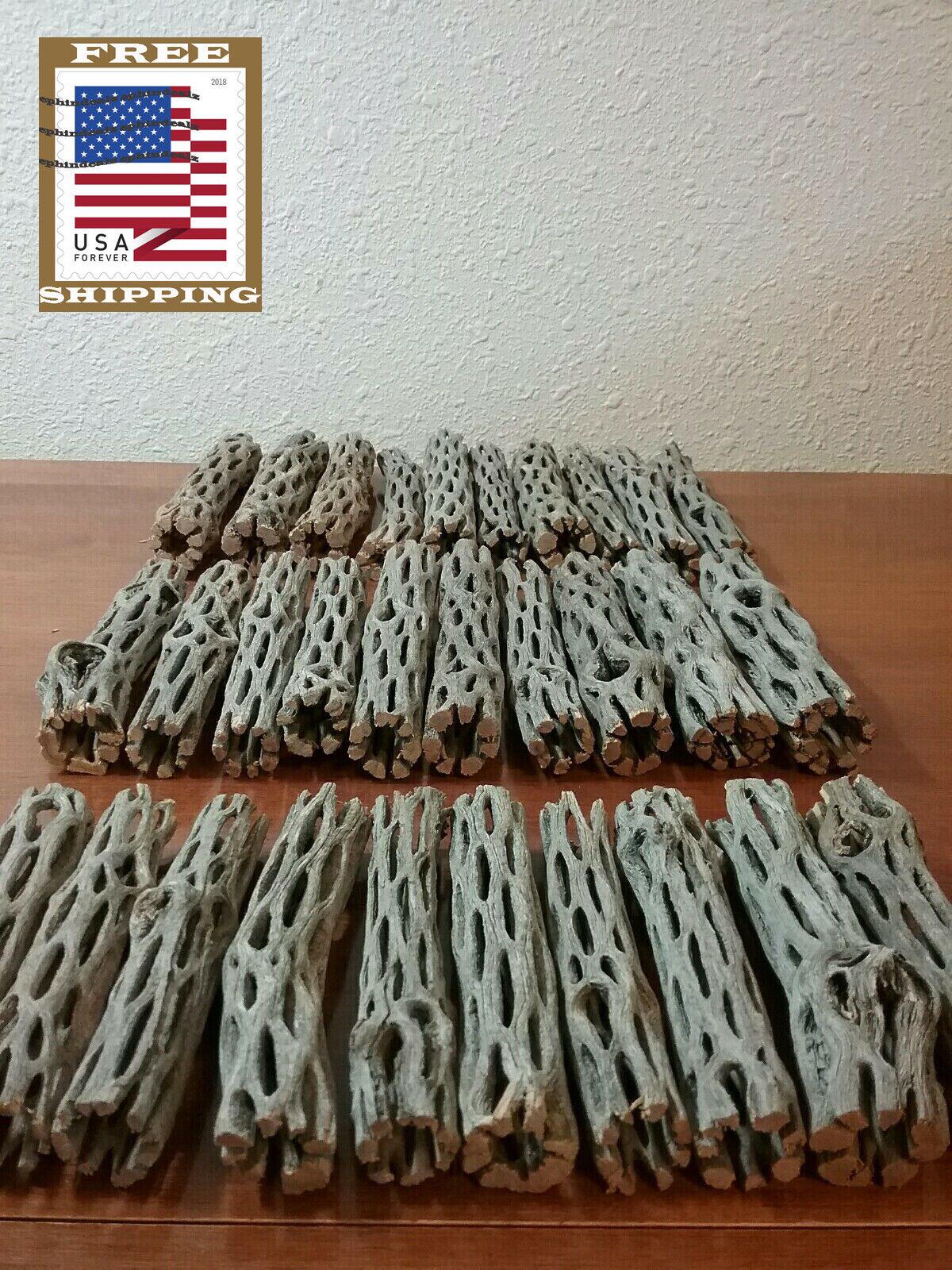 NEW 30 pcs CHOLLA Wood | 3 Sizes Multi-Pack | Organic Driftwood | Craft Aquarium