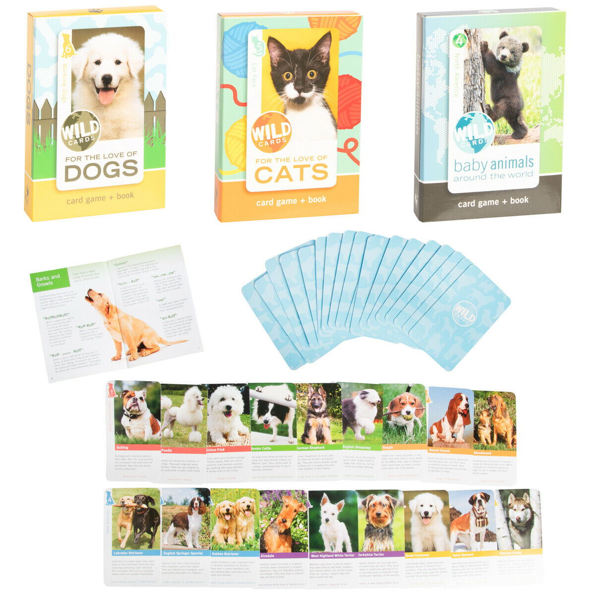 Wild Animal Flash Card Game Book For Kids Educational Learning Cats Dogs Babies 2