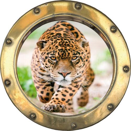 Sticker Trunk the Eye Cheetah Ref H324