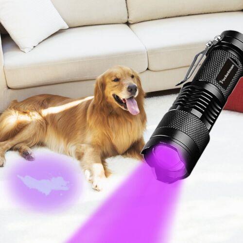 Portable UV DEL Lampe de Poche Torche Fluorescent 395 Presque comme neuf Violet Pourpre Blacklight Lampe