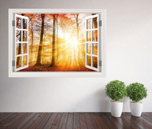 45080526ww Beautiful sunrise in an autumn forest window wall sticker wall mural
