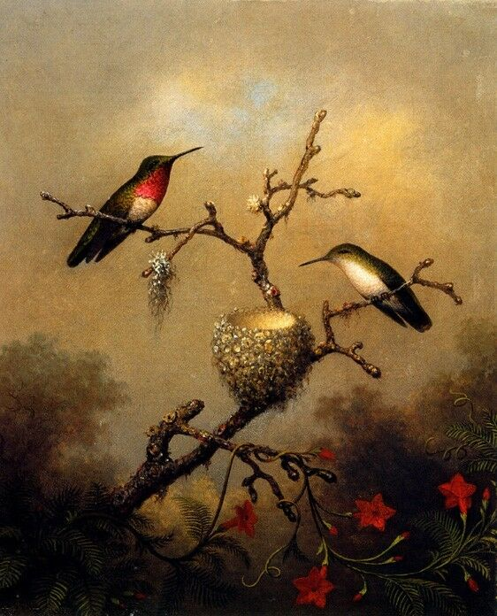 RUBY THROATED FOREST HUMMINGBIRDS BIRD 1864 PAINTING MARTIN JOHNSON HEADE REPRO