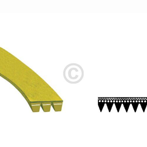 Crantées AEG 132353130//9 1184pj6e élastique pour machine à laver