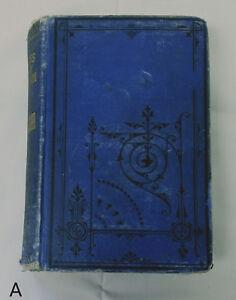 RARE-Antique-1877-Swiss-Family-Robinson-Blue-Jacket-Series-Lippincott-Adventure