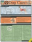 Dog Care: Reference Guide by BarCharts (Other book format, 2003)