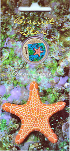 2007-Australian-Ocean-Series-Biscuit-Starfish-1-Uncirculated-Coin