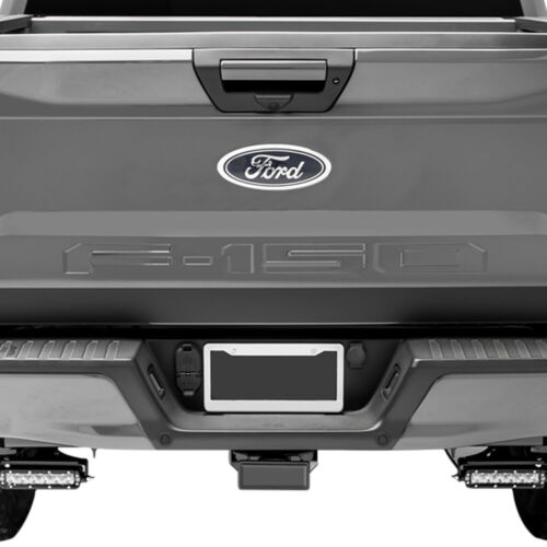 B2G1 Free 2019 Ford F-150 Tailgate Rear Stainless Steel Chrome Letters Inserts