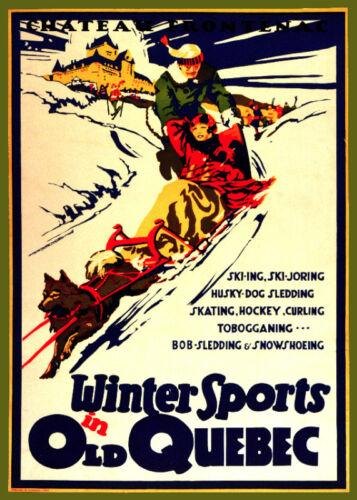 Decor Travel Poster.Fine Graphic Art Design.Dog Sledding.Home Art Design.760