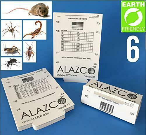 Trapper Insect Trap Great for Bed Bugs Spiders Cockroaches  Includes 90 Traps