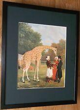 Nubian Giraffe by Jacques-Laurent Agasse, 20''x16'' frame, Giraffe wall art
