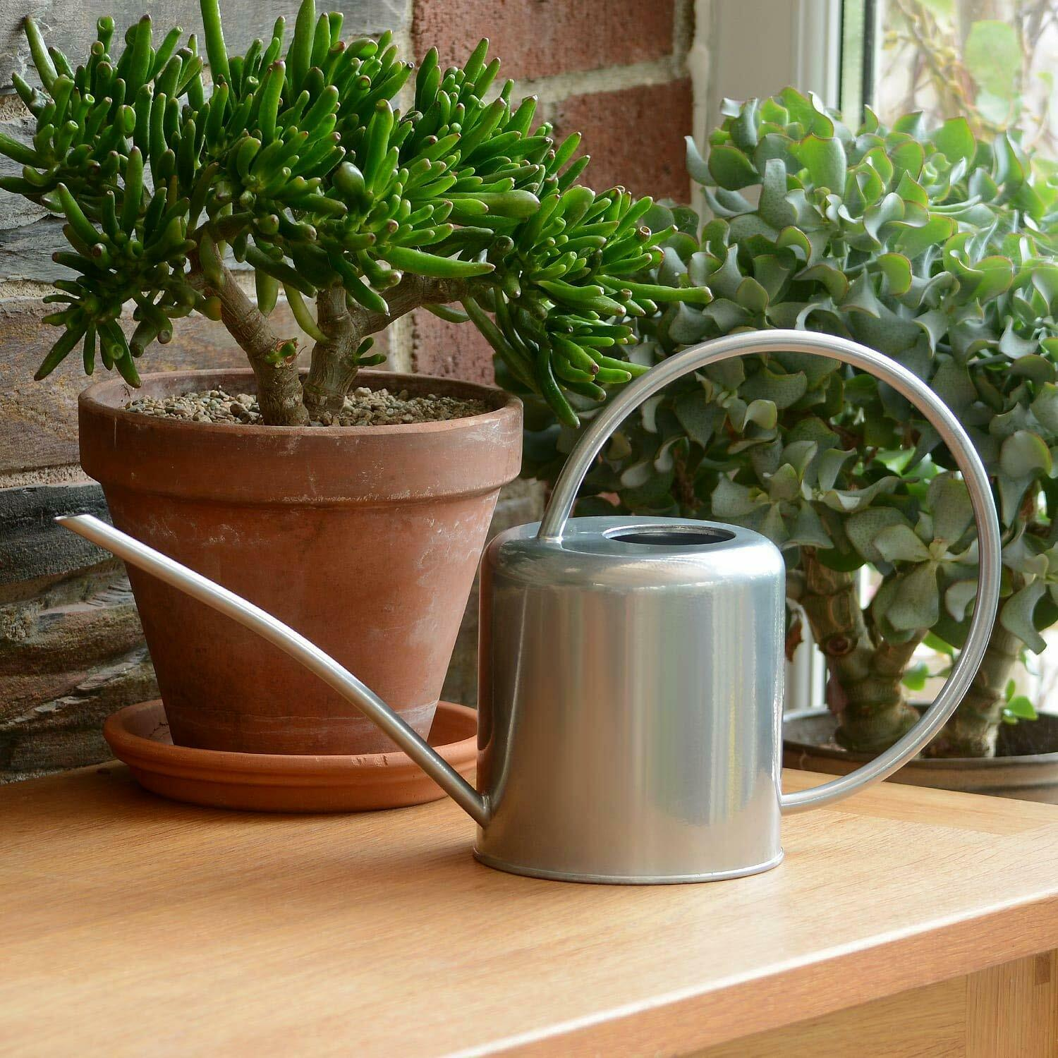 Indoor Small Silver Watering Can Metal Galvanised Steel 1.4L Narrow Spout Plants
