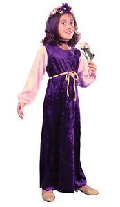 Flower Princess Velvet Child Girls Costume  Pink Velvet Sleeves Fancy Dress