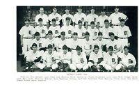 1949 DETROIT TIGERS 8X10 TEAM PHOTO  BASEBALL HOF MLB USA